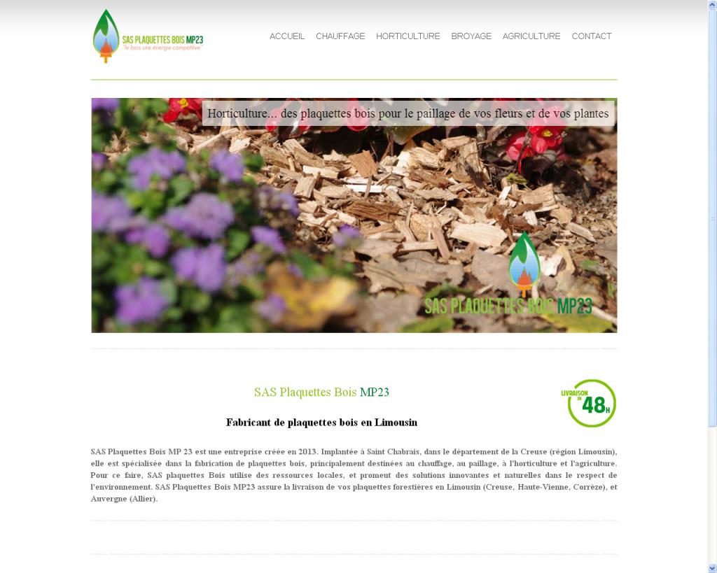 réalisation site internet Peaccom
